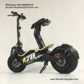 Mini Mad 800w Brushiess Ebike