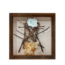 New design wood frame Placing specimens of branches and flowers shadow box frame