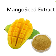 Buy online Mango Seed Extract powder for food