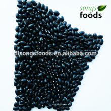 Wholesale China Importers, Black Kidney Bean