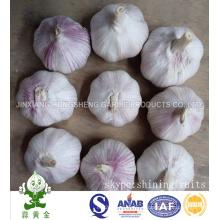 Fresh New Crop Alho Branco Normal Tamanho 5.0cm