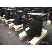AC Brushless Synchrongenerator 184h 30kw