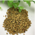 Touchhealthy supply Crotalaria mucronata seeds for planting