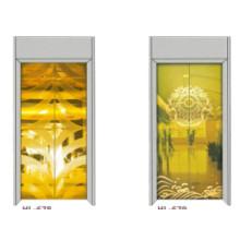 Fjzy-ascenseur (FJ8000-1) ascenseur passager Fjzy-215