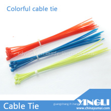 Attaches de câble en nylon autobloquantes colorées