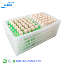 New type plastic egg crate egg transport box