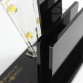 Présentoir acrylique de bureau de magasin de couteaux de fruit d'APEX