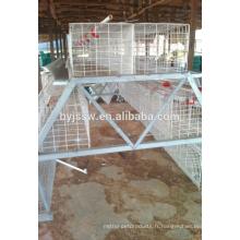 Cage de couche de poulet de capacité de 3 rangées de 120 oiseaux pour la volaille à Dubaï