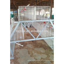3 Tier 120 Birds Capacity Chicken Layer Cage For Poultry Em Dubai