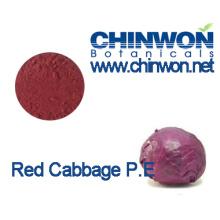 Natürliche Farbstoffe Red Cabbage Extract Kohl Red Powder