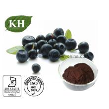 Polifenoles 10%, 40%; Proantocianidinas 40%, 60%; Flavones10% Extracto de Acai