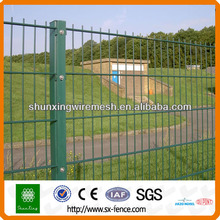 Twin Wire Fence