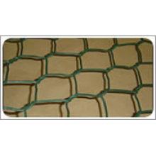 PVC revestido rede de fio hexagonal (HT-41)