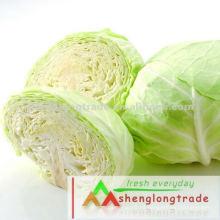 Neuer chinesischer Gemüsefrischer Kohl 2012