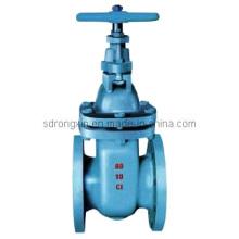 Válvula de compuerta de hierro fundido DIN3352 (RX-GV-01)