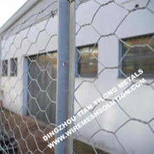 Low Cost Electro Galvanized Hexagonal Wire Netting