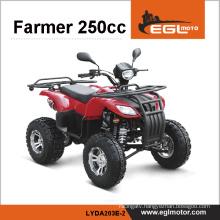 EEC 250cc ATV EGL motor