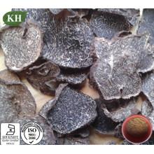 Extracto de trufa negra en crecimiento silvestre para mejorar la inmunidad