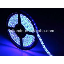 tira llevada 12v llevada luz negra flexible