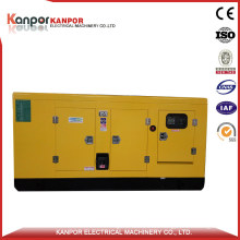 80kw Remote Control Water Cooled Diesel Generator for Cottage