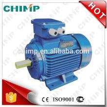 CHINP YD série 700rpm YD100L (850W) trifasicos assíncronos de multi-velocidade AC motor elétrico