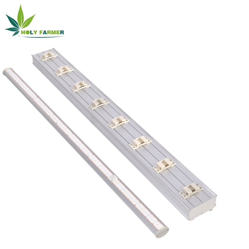Ledgrowlight11