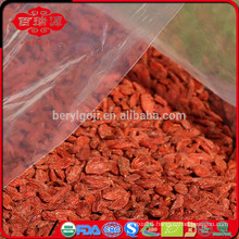 Red goji/berry/vendita wholesaler