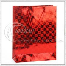 Bolso de compras de papel laminado (KG-PB053)