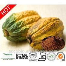 Suplemento de pérdida de peso Extracto de cacao Teobromina 10% 20%
