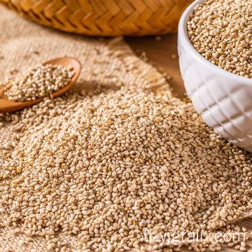 Vente chaude de graines de sésame blanches naturelles humera wollega