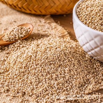Hot selling humera wollega natural white sesame seed