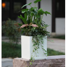 (BC-F1043) Modische Design Kunststoff Selbstbewässernde Blumentopf
