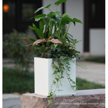 (BC-F1043) Fashionable Design Plastic Self-Watering Flower Pot