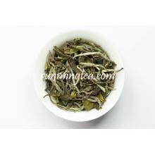 2016 Fresh Best White Brands White Tea Price
