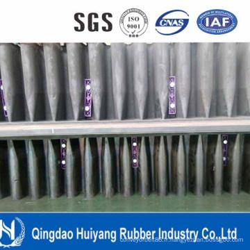 Ceinture de convoyeur d'Ep de haute qualité de fournisseur de la Chine