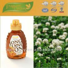 Чистый натуральный сладкий клеверный мед для продажи