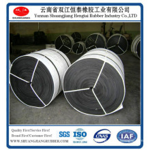 Laceration Resistant Cold Resistant Conveyor Belt