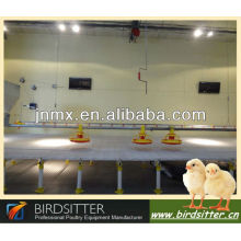 hot lowest price automatic feeding chicken
