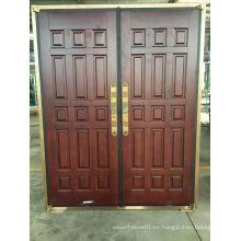 Puerta de cobre de seguridad de acero de diseño simple con estilo