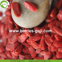 Venta al por mayor Super Sweet Dried Sweet Goji Berry
