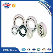 Super Performance Full Ceramic Ball Bearing (6201)