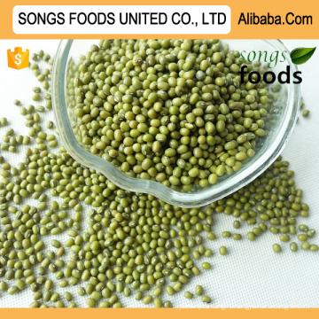 Продовольственный Рынок Зеленая Фасолей Mung Нового Урожая