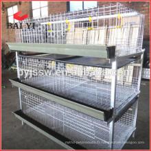 Cage de poulet de poulet à vendre avec haute qualité et bas prix