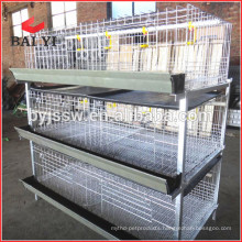 Broiler Chicken Cage for Sale with High Quality and Low Price