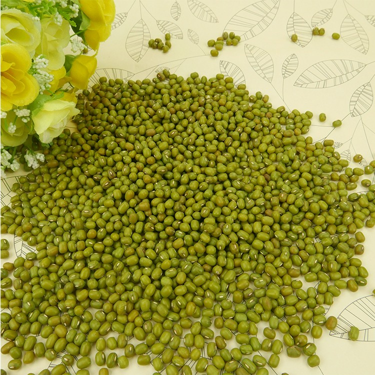 Well Selected Green Mung Bean Kecil