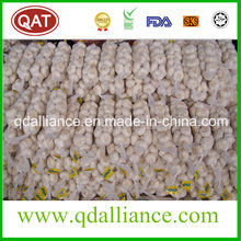 None GMO Normal White Garlic with ISO9001 Certificate