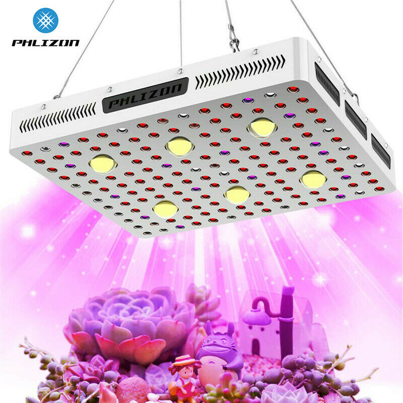 cob 3000w lights planting