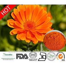 Fuente de la fábrica 100% Extracto de flor de caléndula natural en polvo Zeaxantina 5% -40%