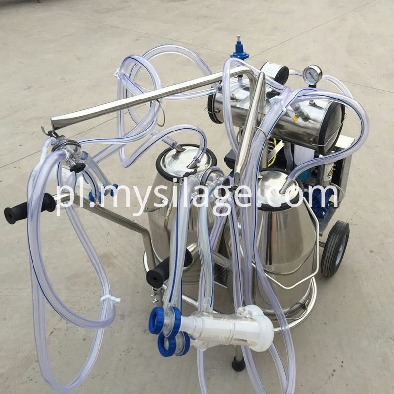 double barrels milking machine
