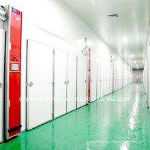 Einstufen-Großkapazitäts-Ei-Inkubator